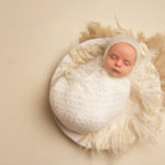 pullman newborn photographer